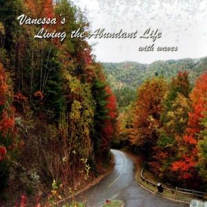 Life of Abundance - Front