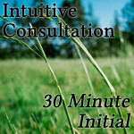 Intuitive-30